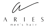 men's hair ARIES